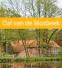 Dal van de Mosbeek in Vasse